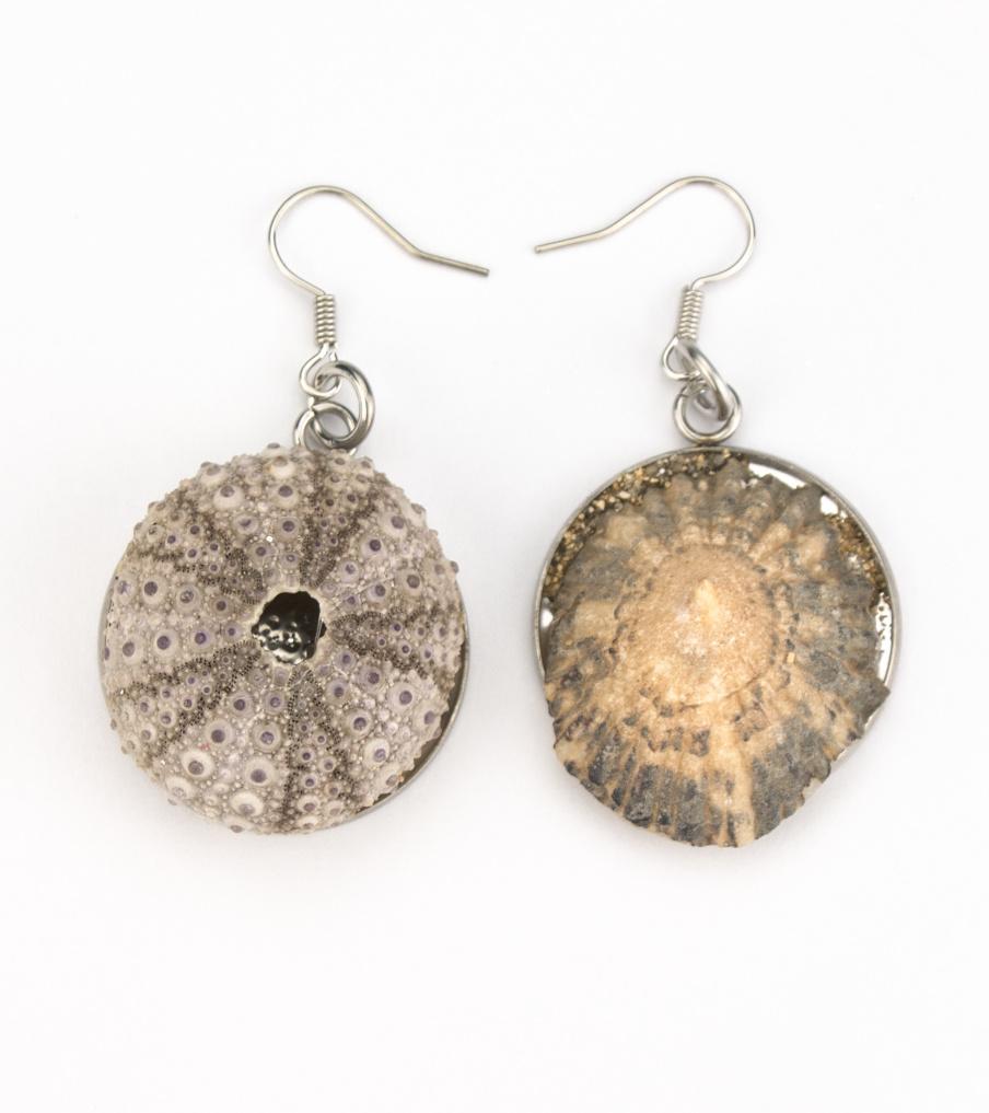 Shells - Kaapverdië - oorbellen | Sieraad - Belinda Brama